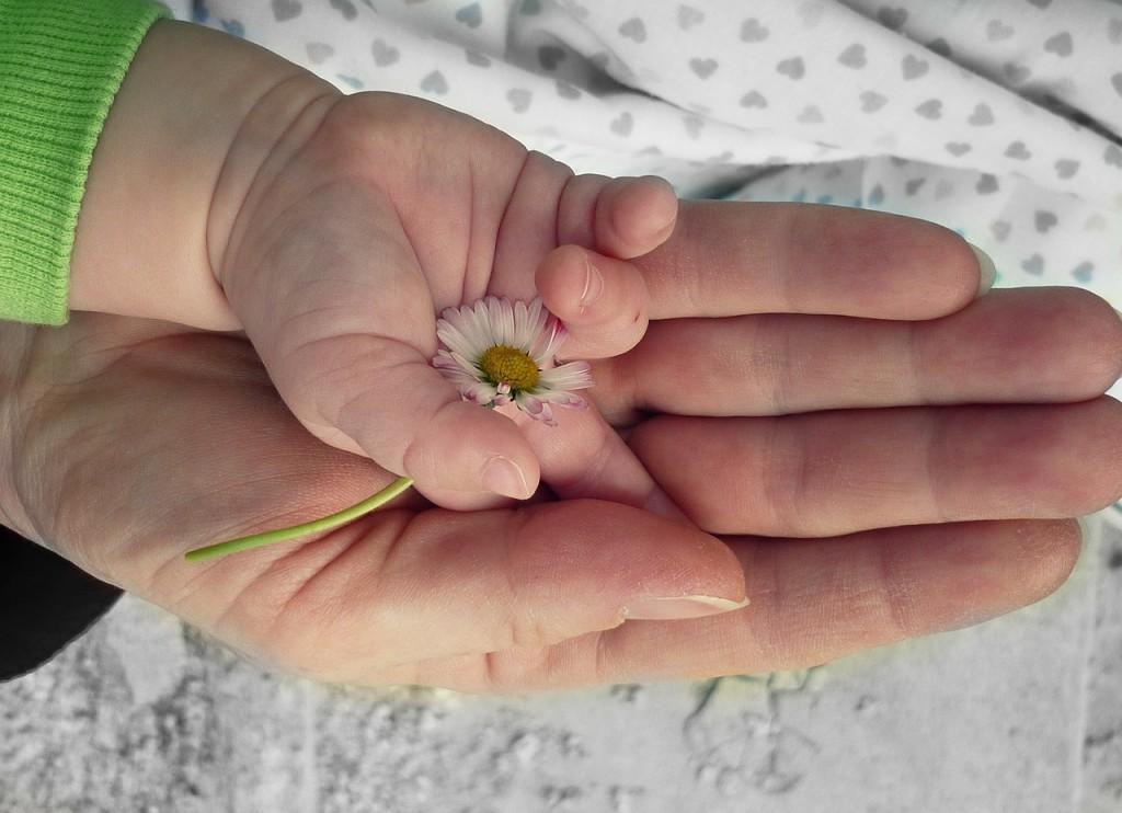 CSR - hands