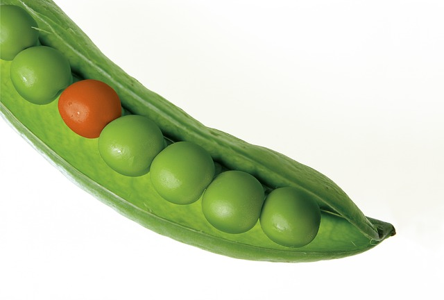 audience-ingredients-peas in a pod